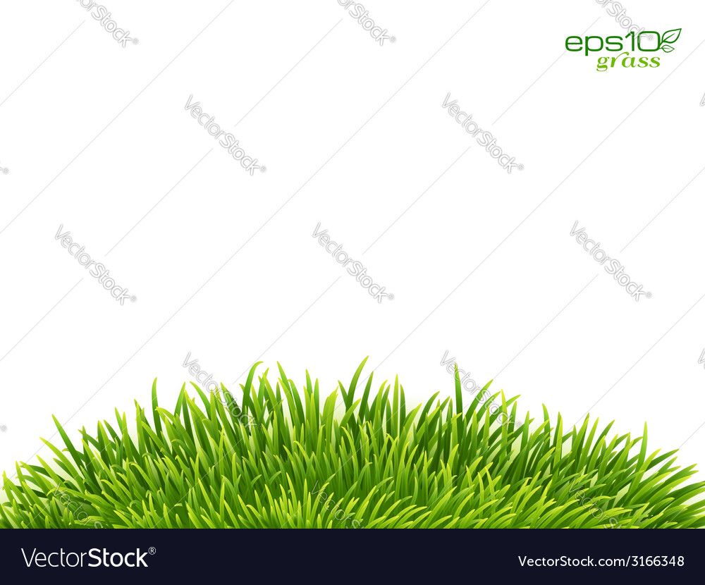Green isolated grass hill on white background vector | Price: 1 Credit (USD $1)