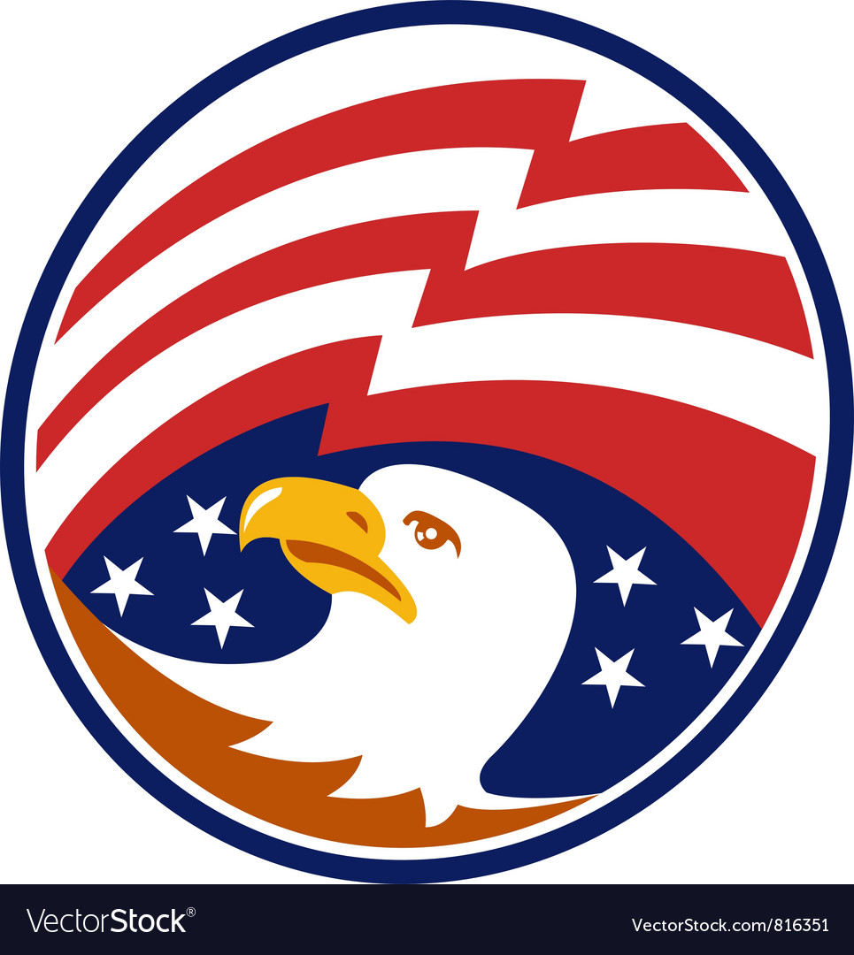 American bald eagle with flag vector