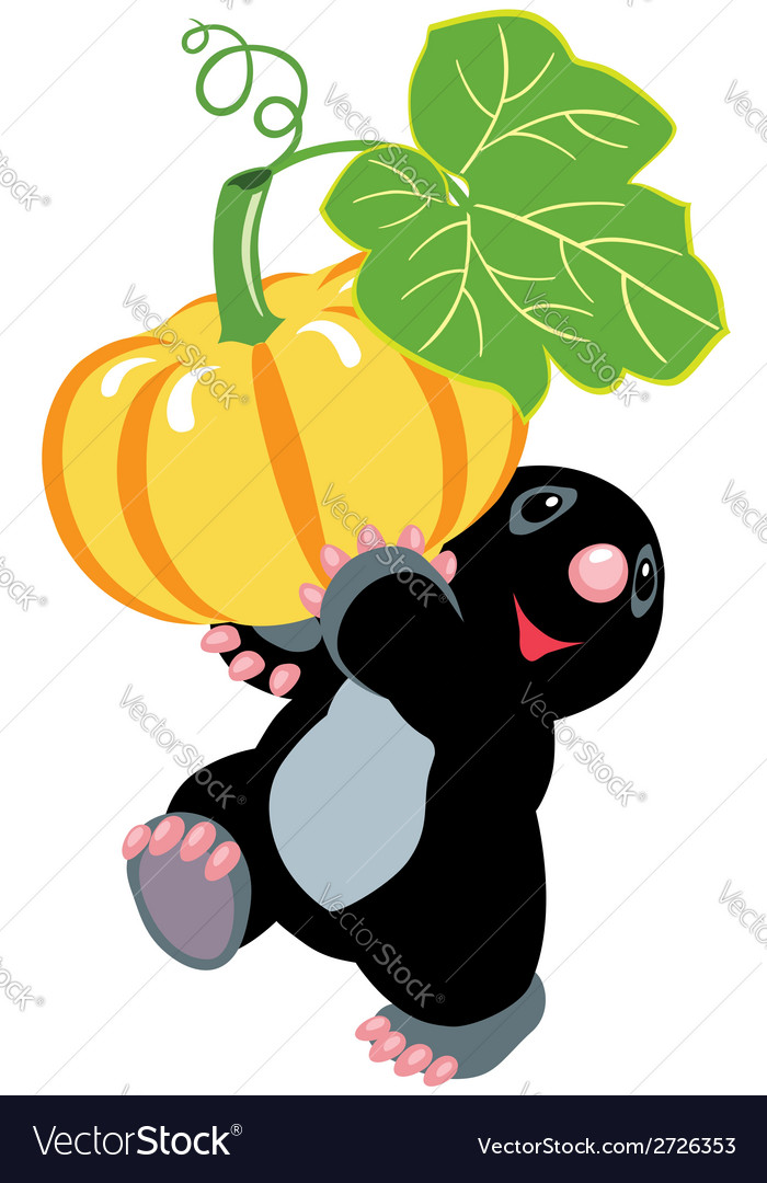 Mole holding a pumpkin vector | Price: 1 Credit (USD $1)