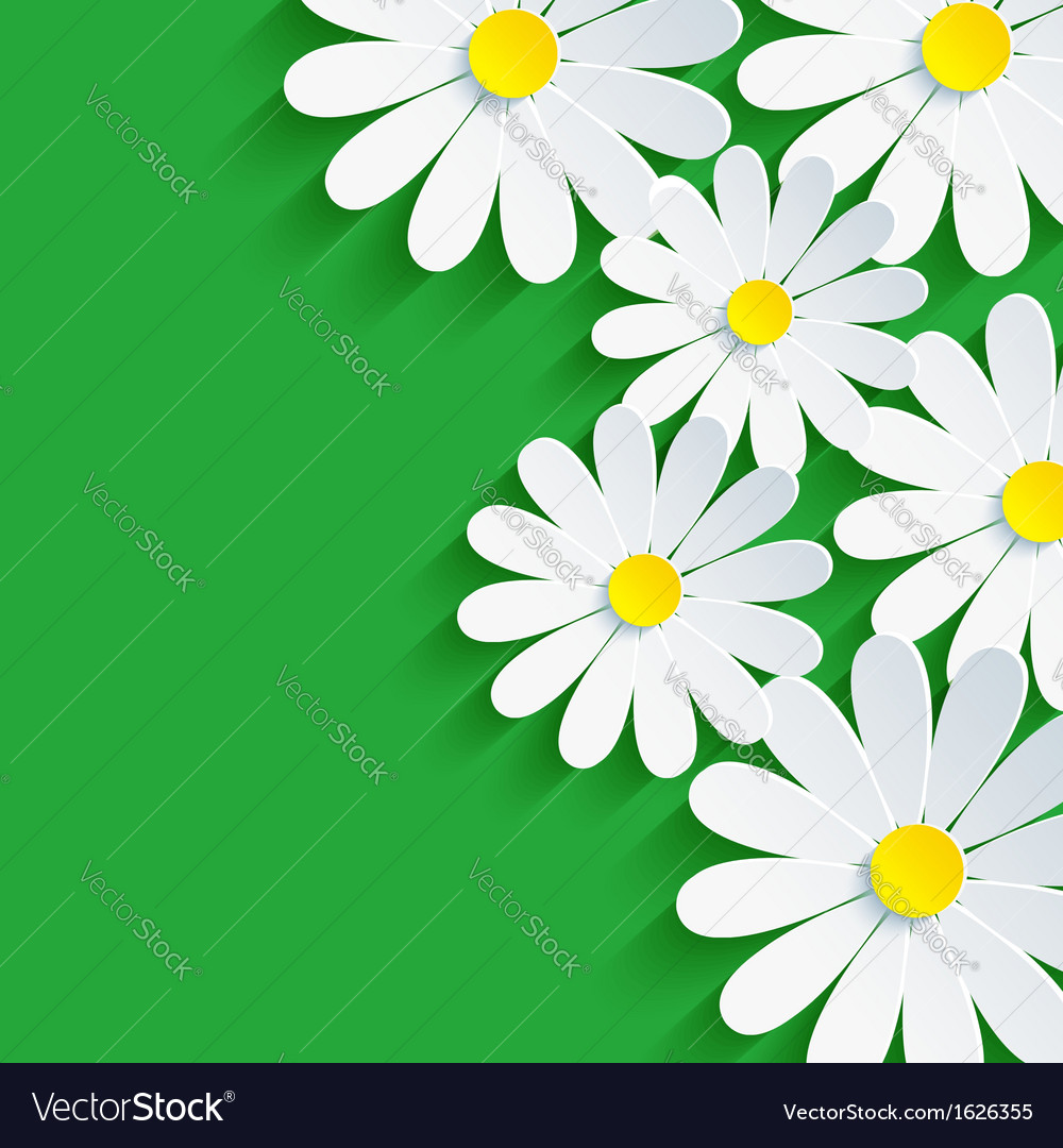 3d flower chamomile spring background abstract vector | Price: 1 Credit (USD $1)