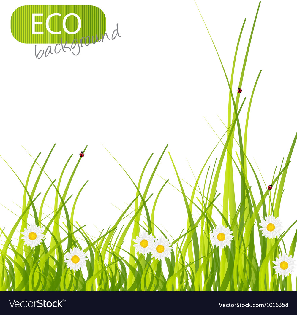 Spring green background grass and flower vector | Price: 1 Credit (USD $1)