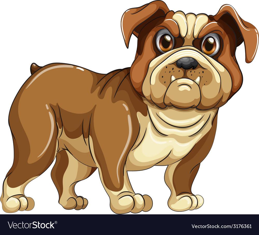 Bulldog vector | Price: 1 Credit (USD $1)