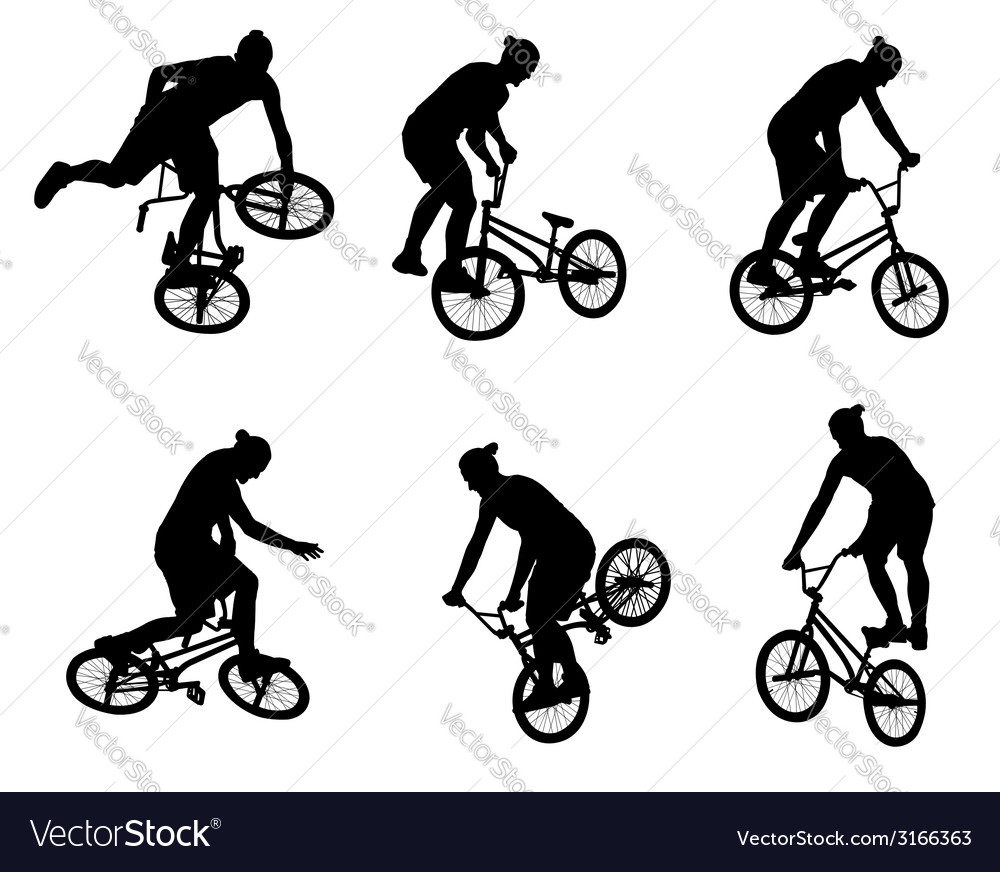 Stunt bicyclists vector | Price: 1 Credit (USD $1)