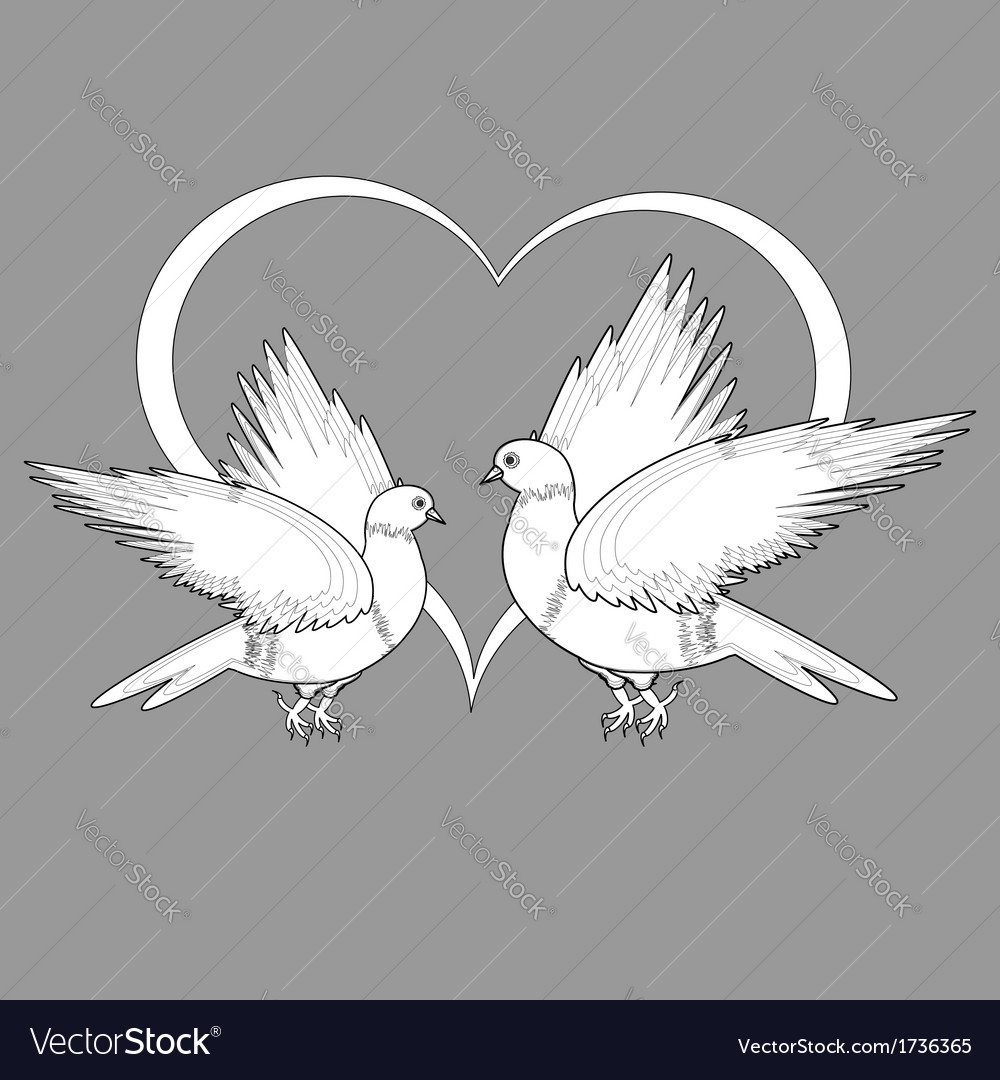 A monochrome sketch of two doves and a heart vector | Price: 1 Credit (USD $1)