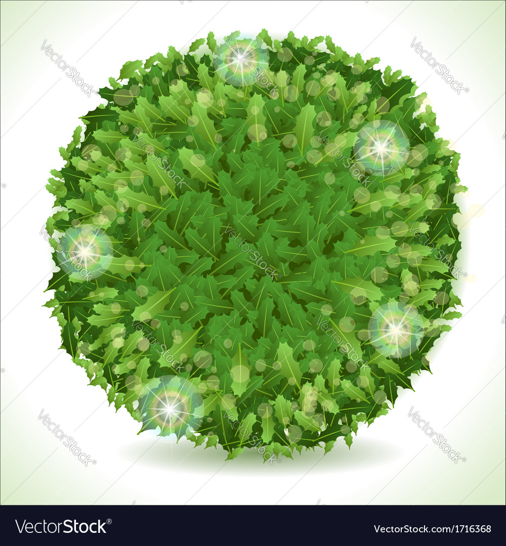 Holly leaves circle placeholder isolated on white vector | Price: 1 Credit (USD $1)