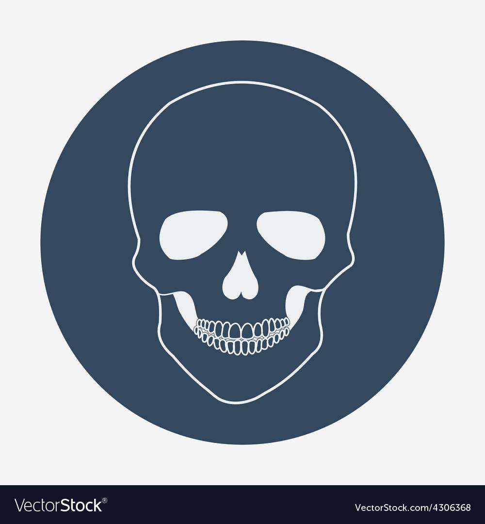 Single flat skull icon vector   Price: 1 Credit (USD $1)