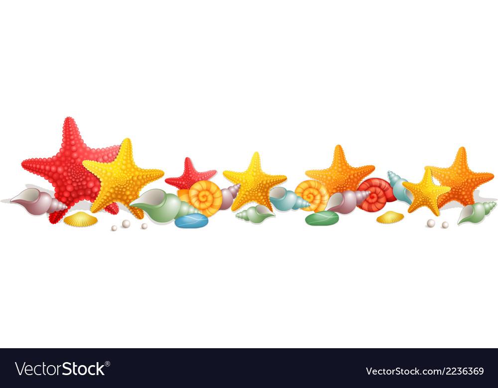 Sea stars and sea shells vector