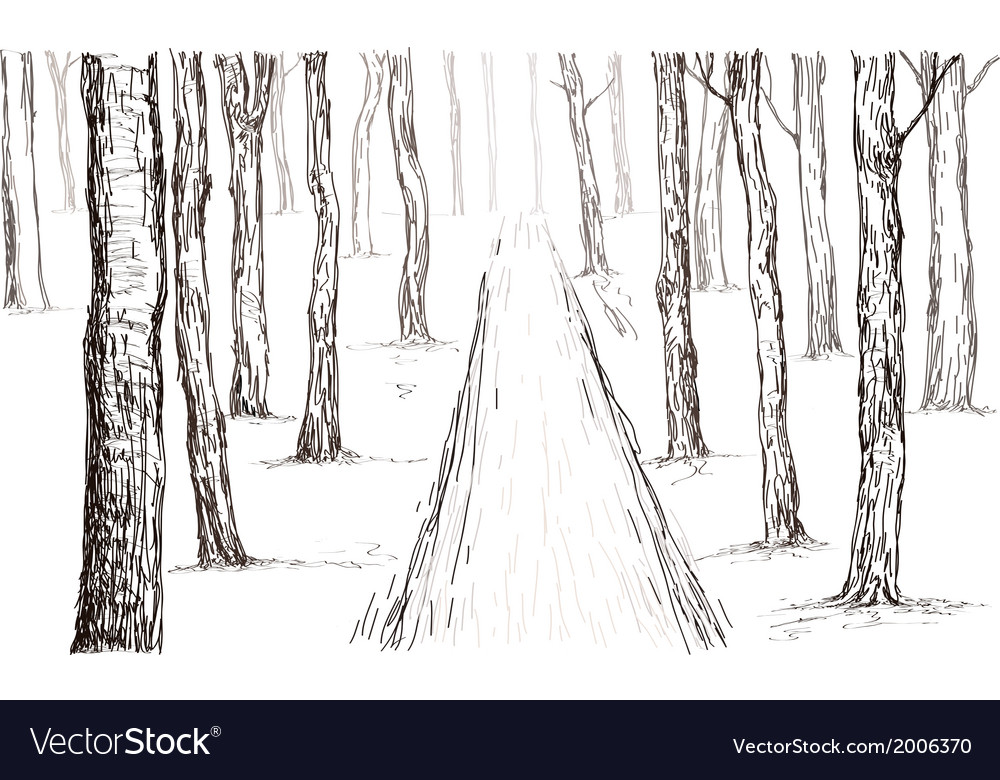 Forest drawing vector | Price: 1 Credit (USD $1)