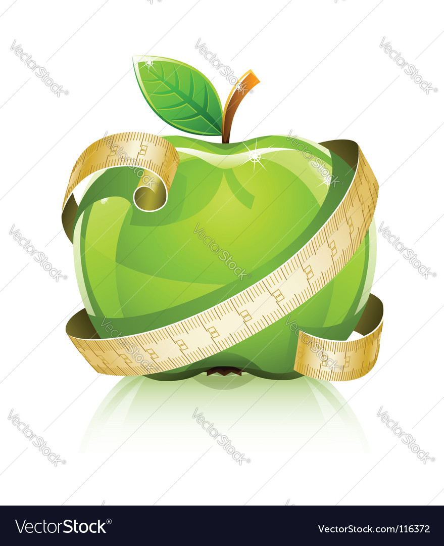 Apple with measuring line vector | Price: 3 Credit (USD $3)