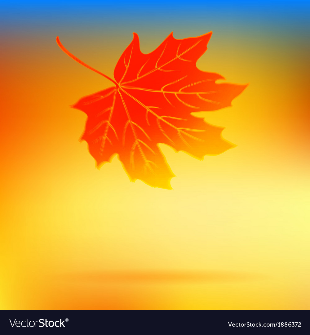 Autumn card with falling leaf and soft lights vector | Price: 1 Credit (USD $1)