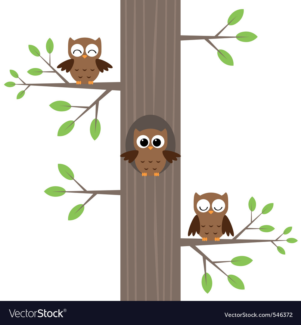 Three owls vector | Price: 1 Credit (USD $1)