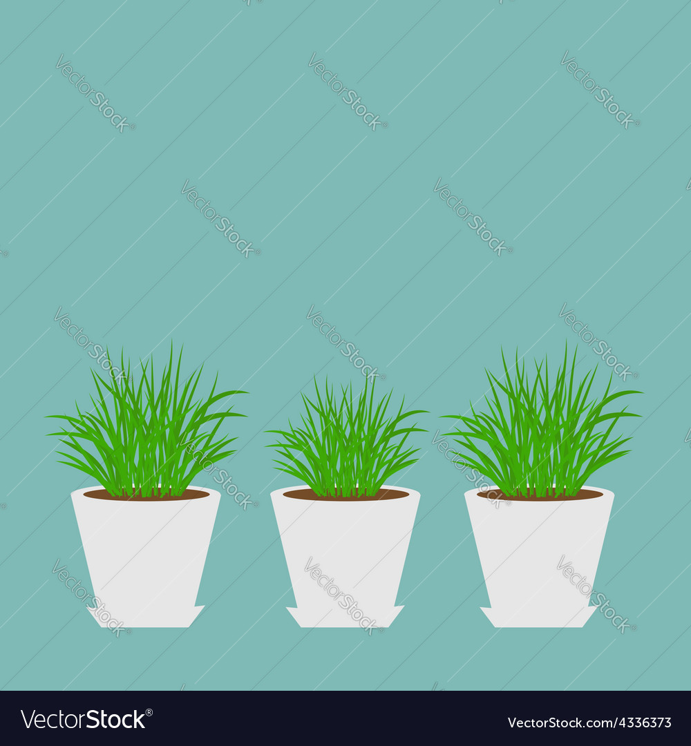 Three pots with growing grass icon set blue vector | Price: 1 Credit (USD $1)