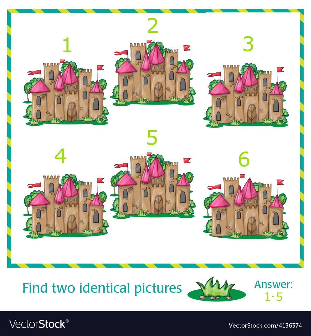 Find two identical pictures vector | Price: 3 Credit (USD $3)