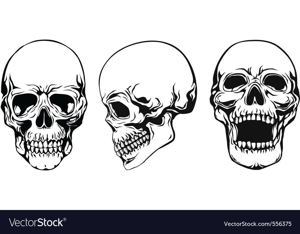 Skull set vector | Price: 1 Credit (USD $1)