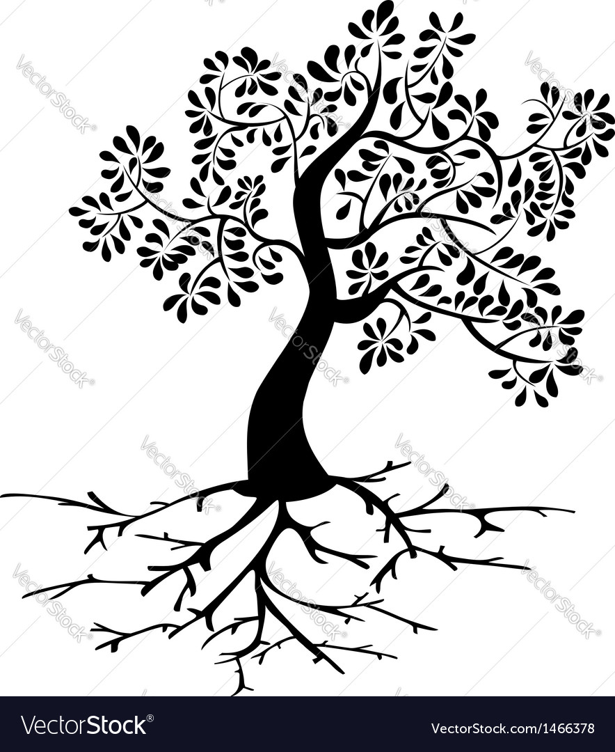 Black tree roots silhouette vector | Price: 1 Credit (USD $1)