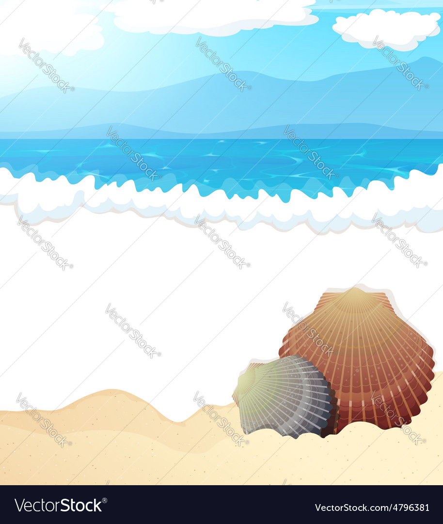 Tropical beach with seashells vector | Price: 3 Credit (USD $3)
