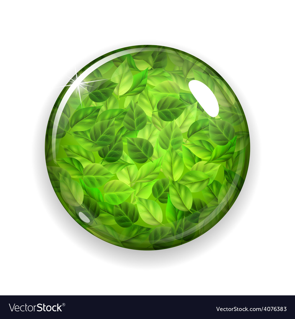 Glass button or sphere with green leaves vector | Price: 3 Credit (USD $3)