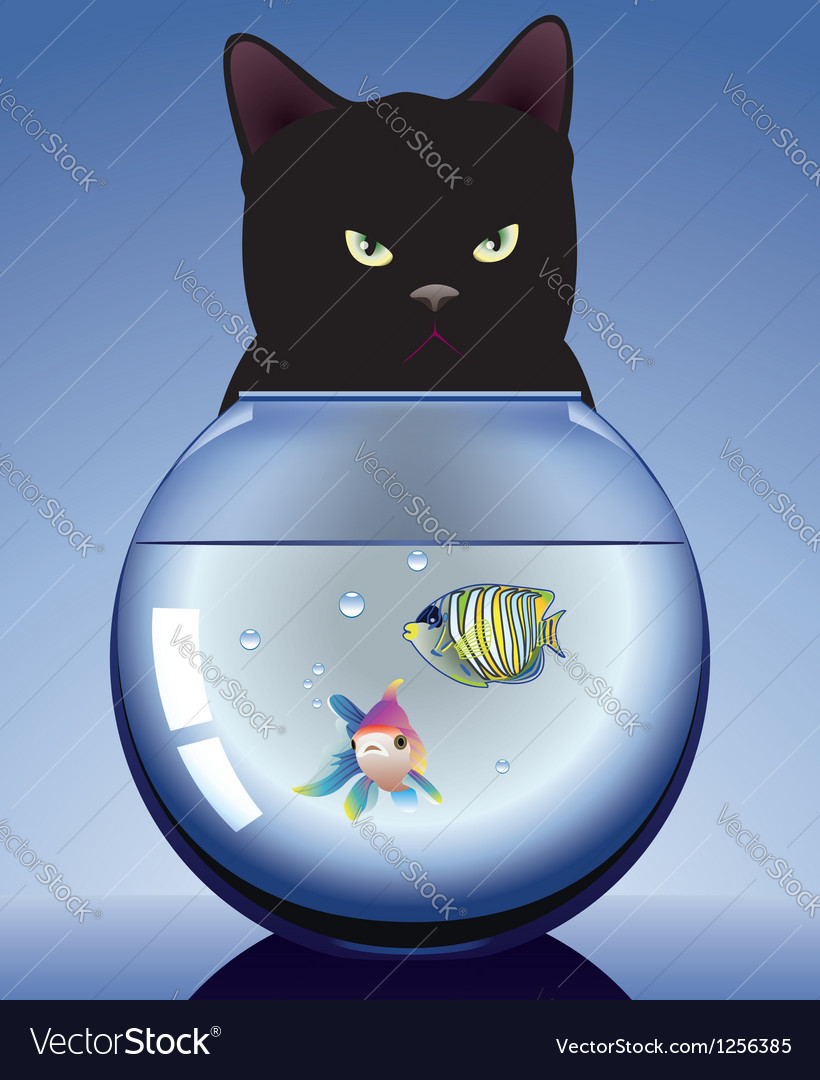 Cat and aquarium vector | Price: 1 Credit (USD $1)