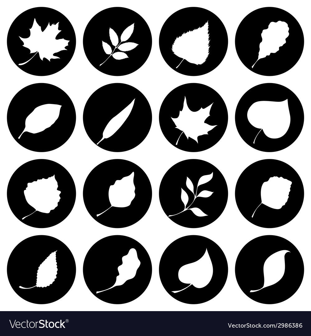 Set of round nature icons vector | Price: 1 Credit (USD $1)