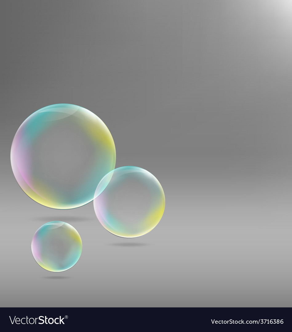 Soap bubbles on grayscale vector | Price: 1 Credit (USD $1)