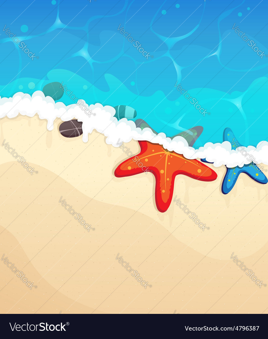 Tropical beach with starfish vector | Price: 3 Credit (USD $3)