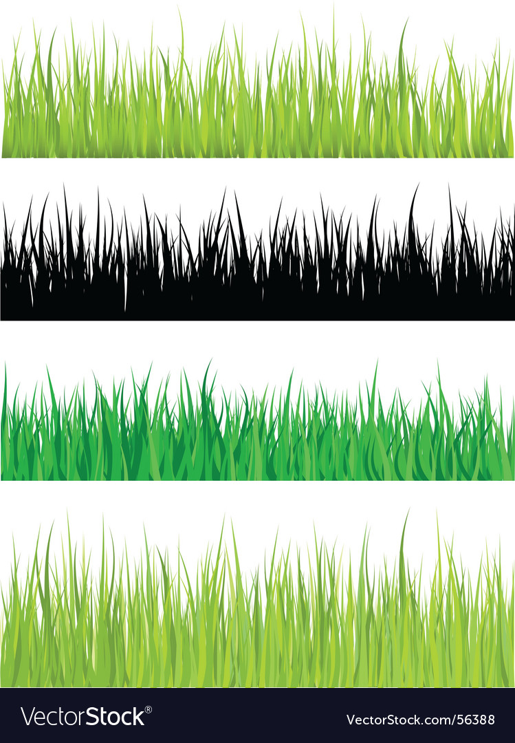 Detailed grass vector | Price: 1 Credit (USD $1)