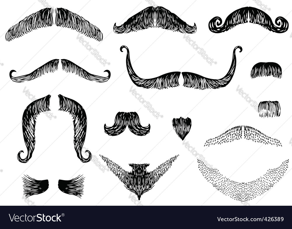 Moustaches vector | Price: 1 Credit (USD $1)