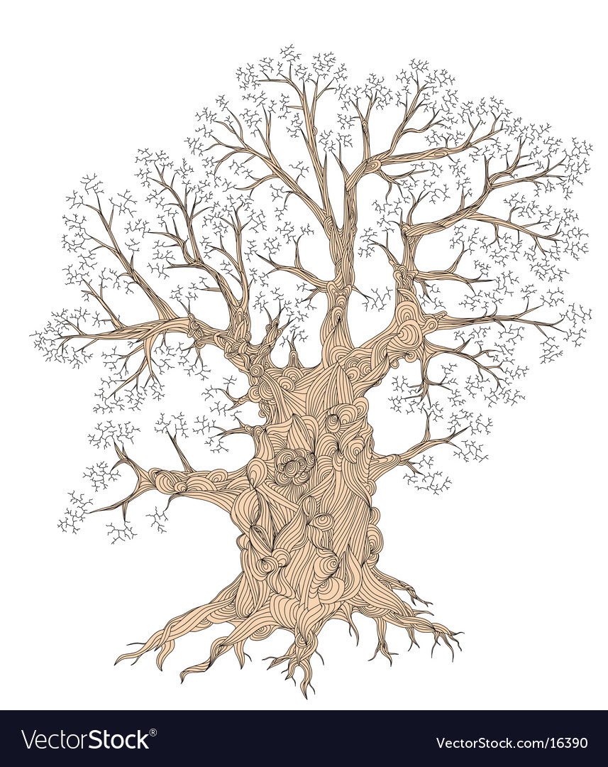 Gnarled tree vector | Price: 1 Credit (USD $1)