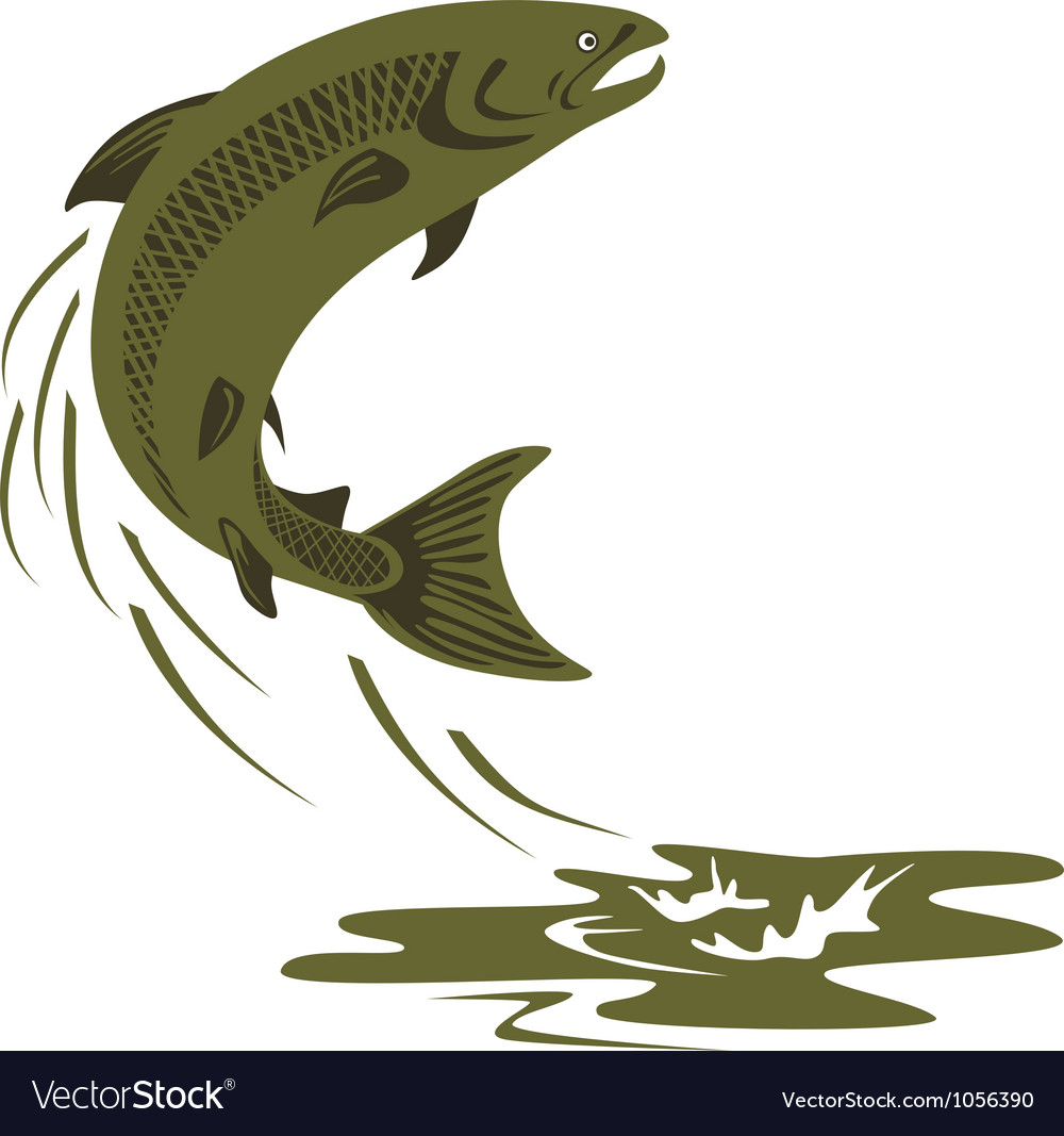 Trout fish retro vector | Price: 1 Credit (USD $1)