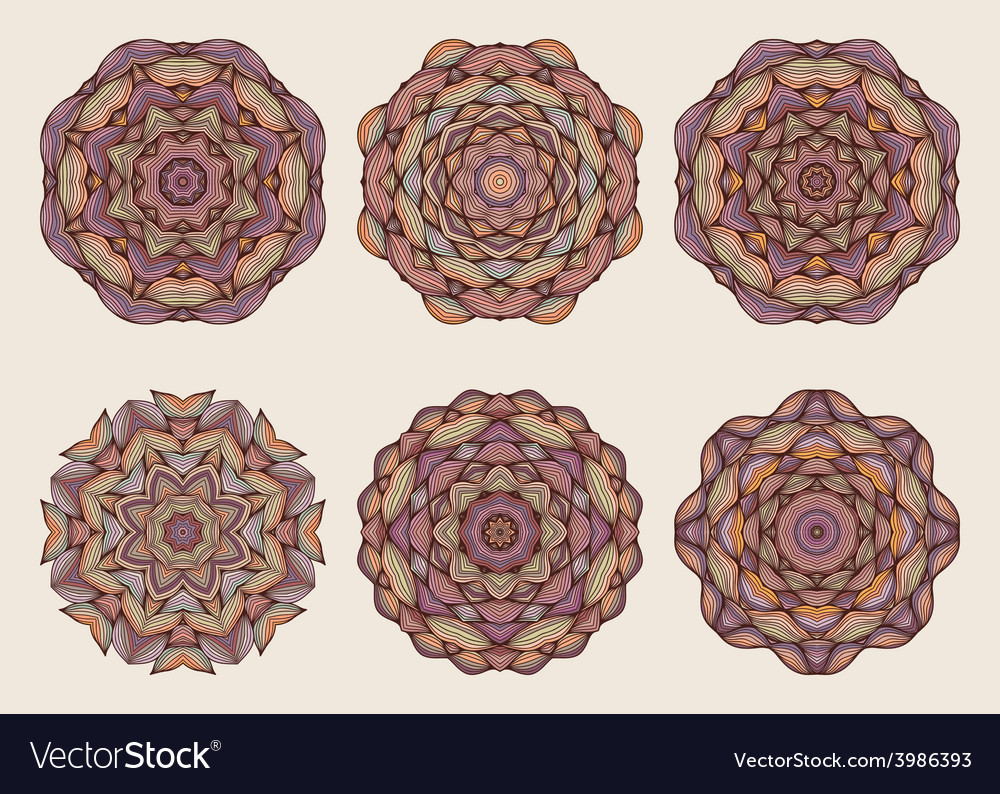 Set of mandalas beautiful hand drawn flowers vector | Price: 1 Credit (USD $1)