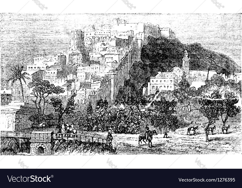 Algiers city vintage engraving capital of algeria vector | Price: 1 Credit (USD $1)