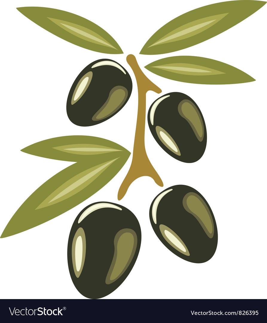 Black olives symbol vector | Price: 1 Credit (USD $1)