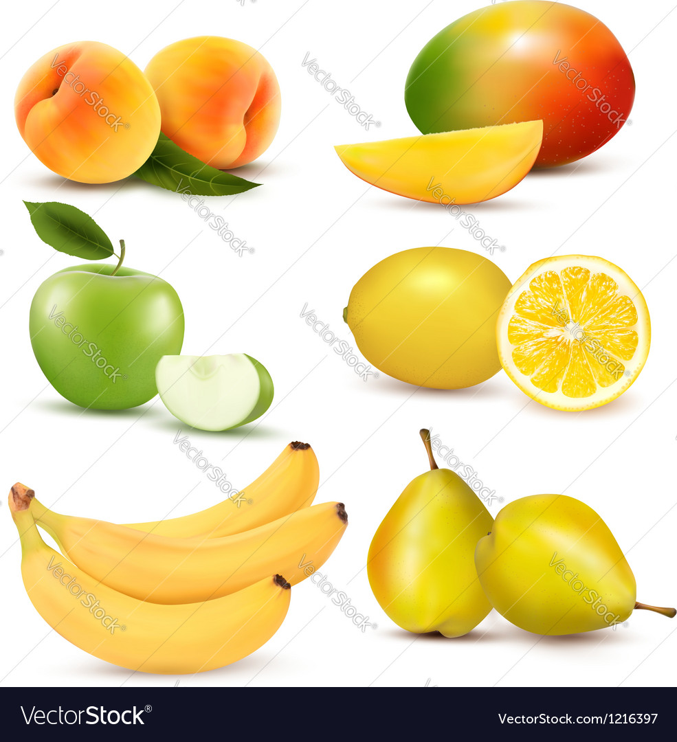 Big group of different fruit vector | Price: 3 Credit (USD $3)