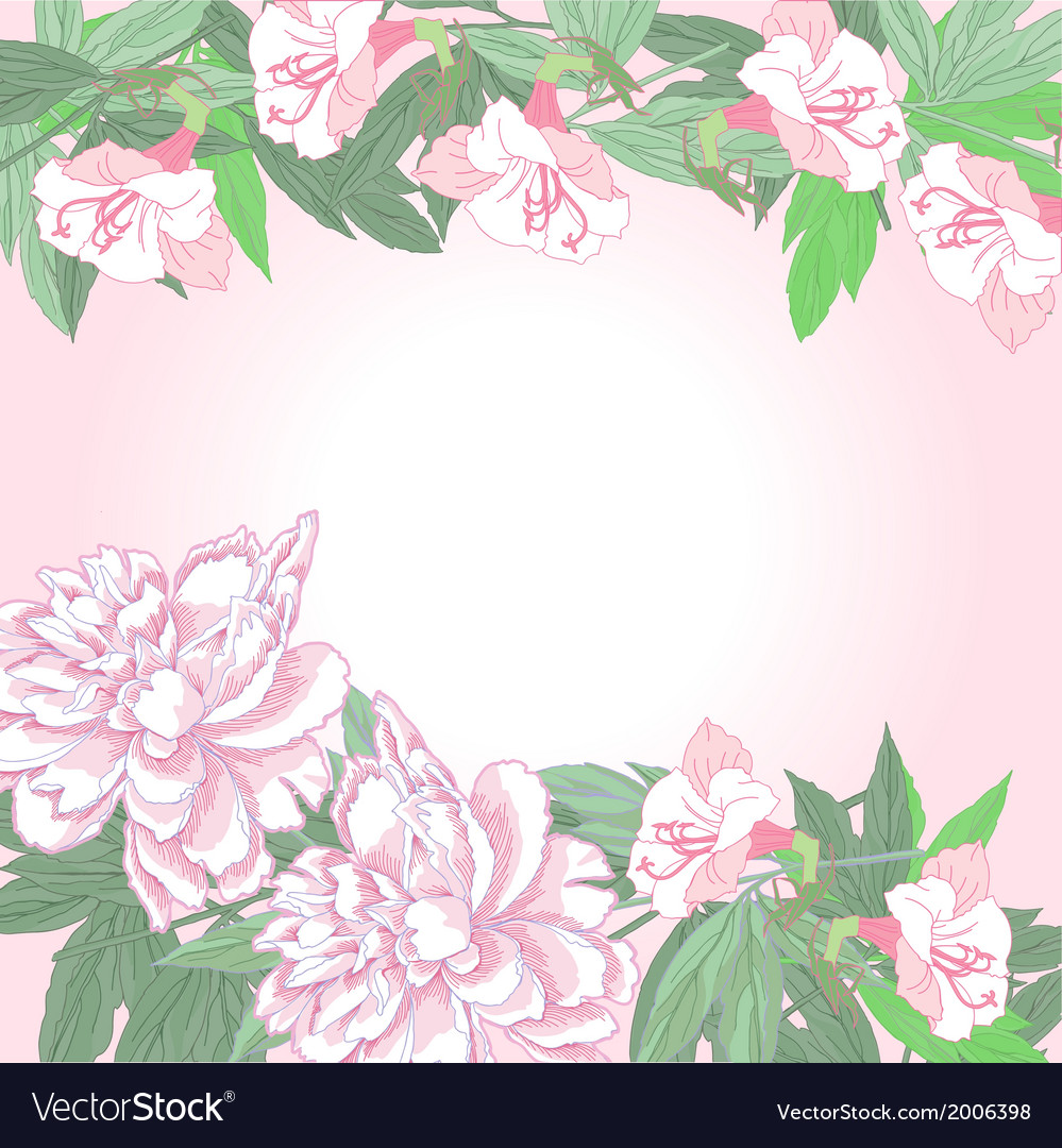 Background with two pink peonies and flowers vector | Price: 1 Credit (USD $1)