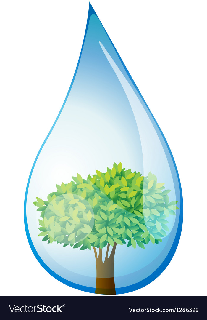 A tree inside the water drop vector | Price: 1 Credit (USD $1)