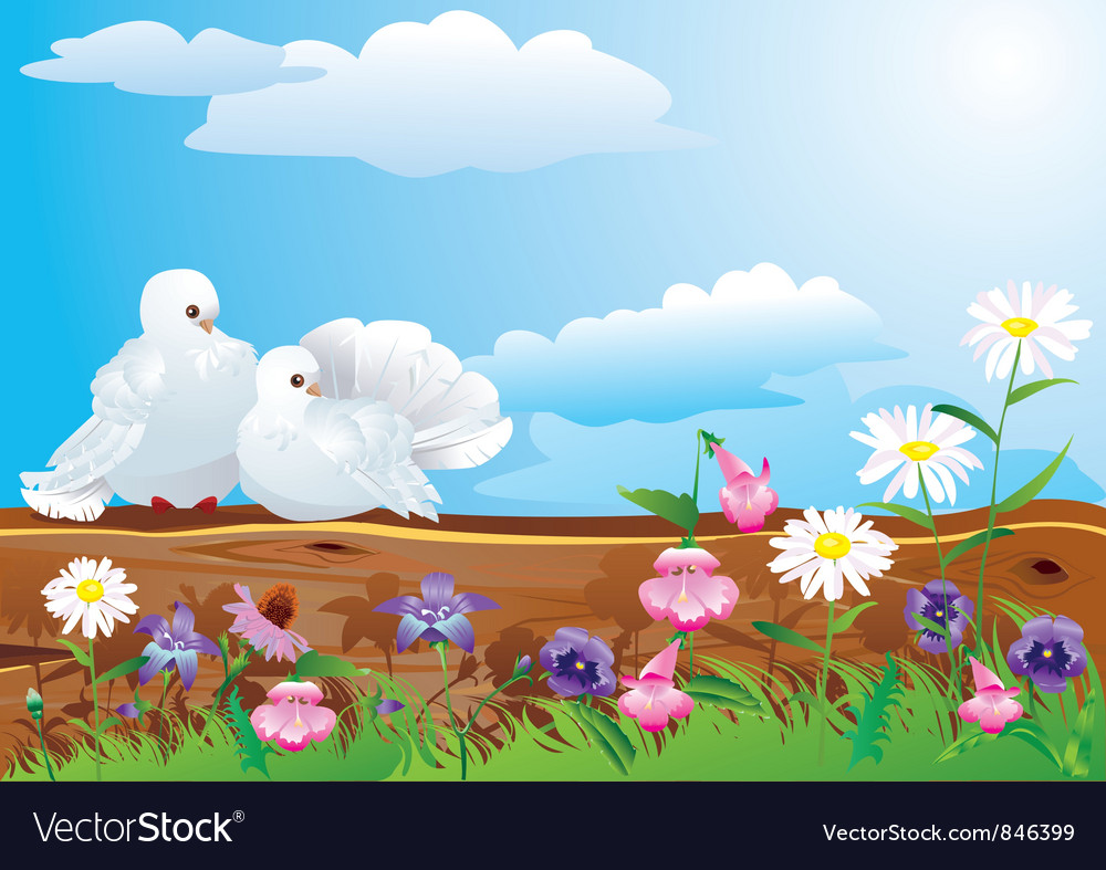 White pigeons with summer vector | Price: 1 Credit (USD $1)
