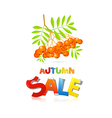 Colorful autumn sale theme with rowan berries vector