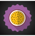 Marakuja passion fruit flat icon with long shadow vector
