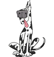 Harlequin dog cartoon vector