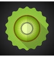 Kiwi fruit flat icon with long shadow vector