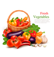Background with fresh vegetables in basket healthy vector