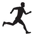 Side runner vector