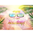 Summer sky with sun wearing sunglasses vector