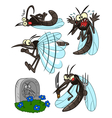 Mosquito set vector