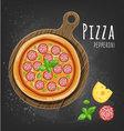 Pizza pepperoni vector