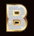 B bling bling vector