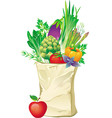 Shopping bag full of vegetables vector