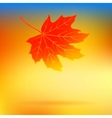 Autumn card with falling leaf and soft lights vector