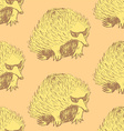 Sketch cute echidna in vintage style vector