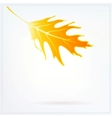 Autumn card with falling leaf on white background vector